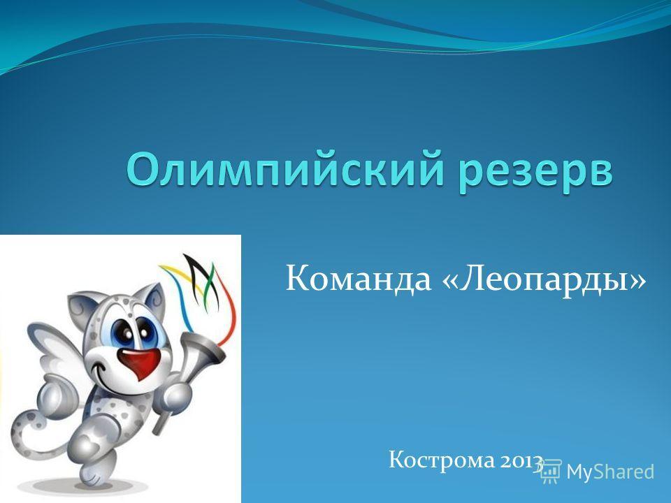 Команда «Леопарды» Кострома 2013