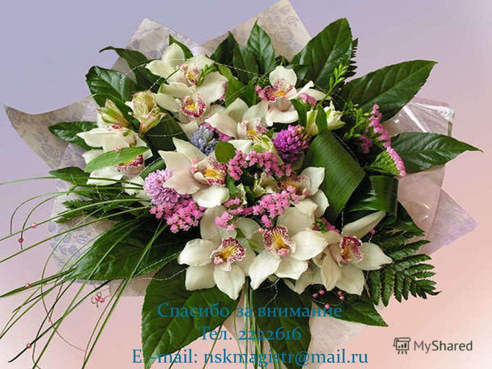 Спасибо за внимание Тел. 2222616 E –mail: nskmagistr@mail.ru