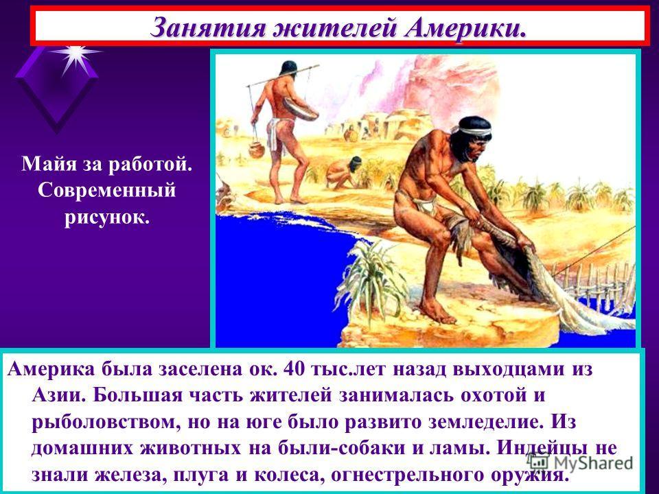 Занятия жителей Америки. Америка была заселена ок. 40 тыс.лет назад выходцами из Азии. Большая часть жителей занималась охотой и рыболовством, но на юге было развито земледелие. Из домашних животных на были-собаки и ламы. Индейцы не знали железа, плу