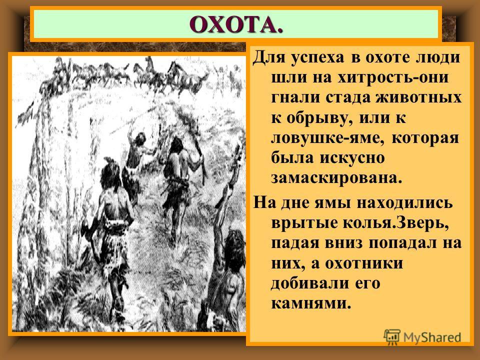 ОХОТА. Для успеха в охоте люди шли на хитрость-они гнали стада животных к обрыву, или к ловушке-яме, которая была искусно замаскирована. На дне ямы находились врытые колья.Зверь, падая вниз попадал на них, а охотники добивали его камнями.