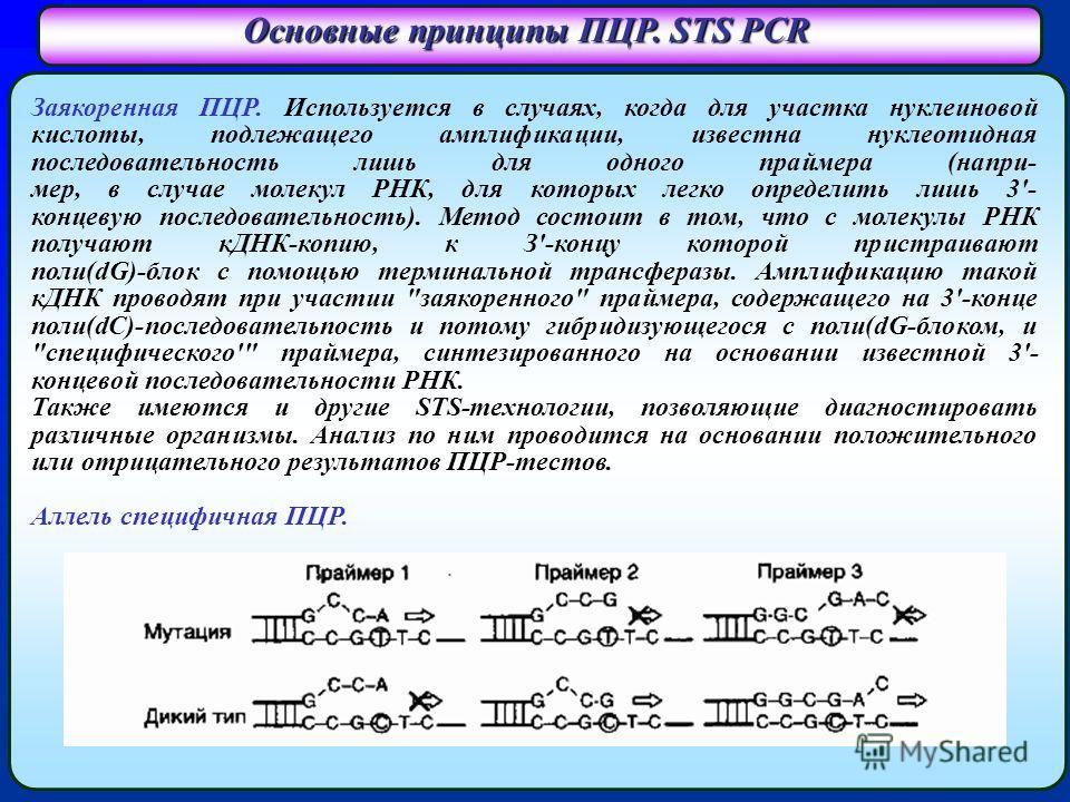 Основные принципы ПЦР. STS PCR Заякоренная ПЦР. Используется в случаях, когда для участка нуклеиновой кислоты, подлежащего амплификации, известна нуклеотидная последовательность лишь для одного праймера (напри- мер, в случае молекул РНК, для которых