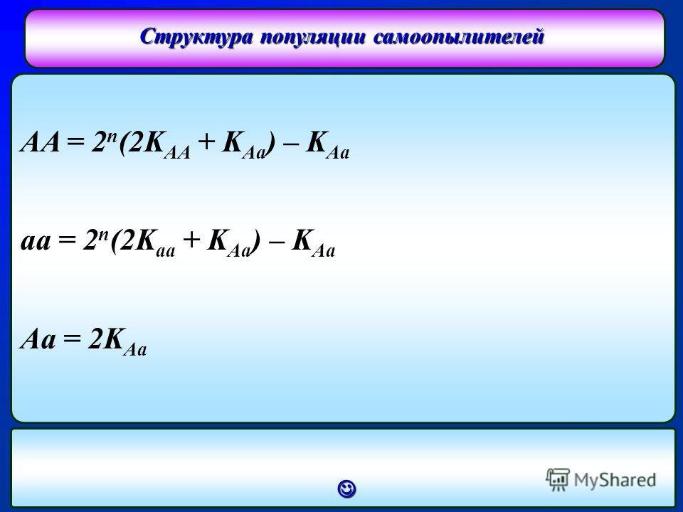 Структура популяции самоопылителей AA = 2 n (2K AA + K Aa ) – K Aa aa = 2 n (2K aa + K Aa ) – K Aa Aa = 2K Aa