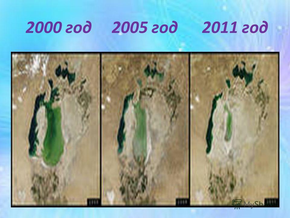 2000 год 2005 год 2011 год
