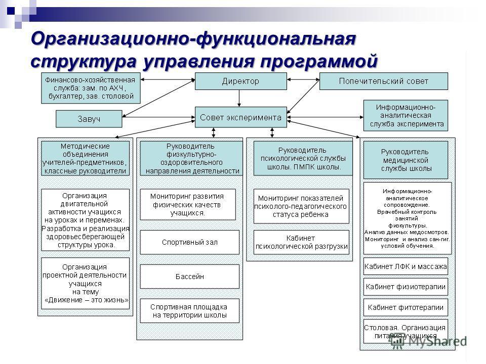 Организационно-функциональная структура управления программой