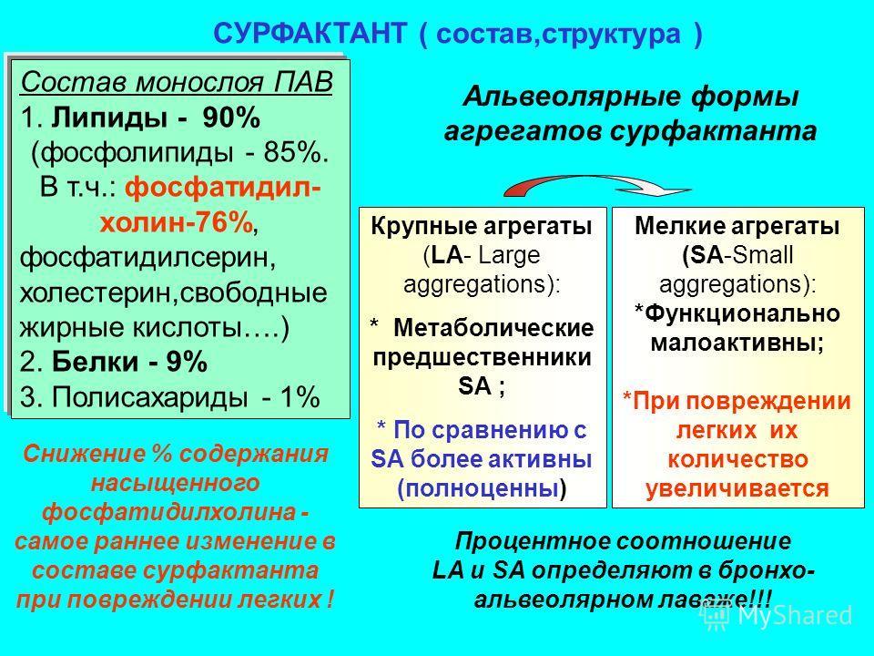 Состав монослоя ПАВ 1. Липиды - 90% (фосфолипиды - 85%. В т.ч.: фосфатидил- холин-76%, фосфатидилсерин, холестерин,свободные жирные кислоты….) 2. Белки - 9% 3. Полисахариды - 1% СУРФАКТАНТ ( состав,структура ) Альвеолярные формы агрегатов сурфактанта