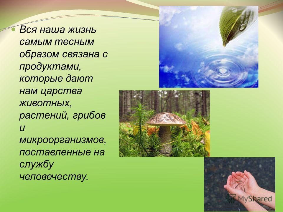 Вся наша жизнь самым тесным образом связана с продуктами, которые дают нам царства животных, растений, грибов и микроорганизмов, поставленные на службу человечеству.