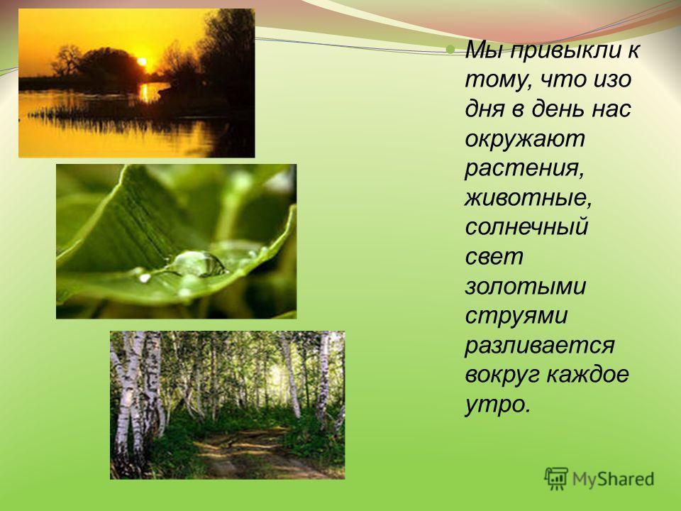 Мы привыкли к тому, что изо дня в день нас окружают растения, животные, солнечный свет золотыми струями разливается вокруг каждое утро.