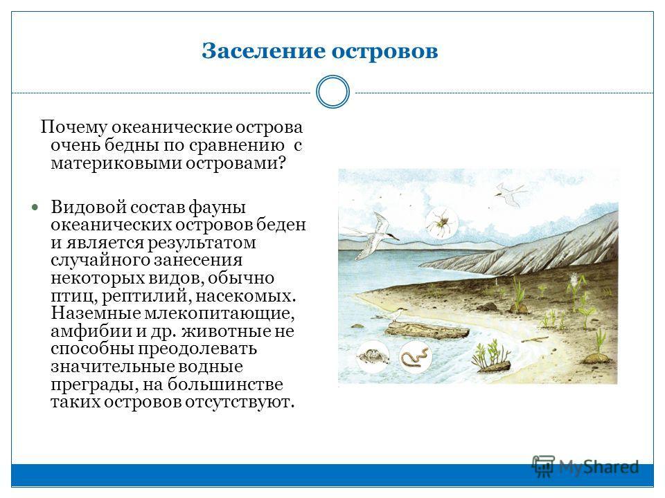 Заселение островов Почему океанические острова очень бедны по сравнению с материковыми островами? Видовой состав фауны океанических островов беден и является результатом случайного занесения некоторых видов, обычно птиц, рептилий, насекомых. Наземные