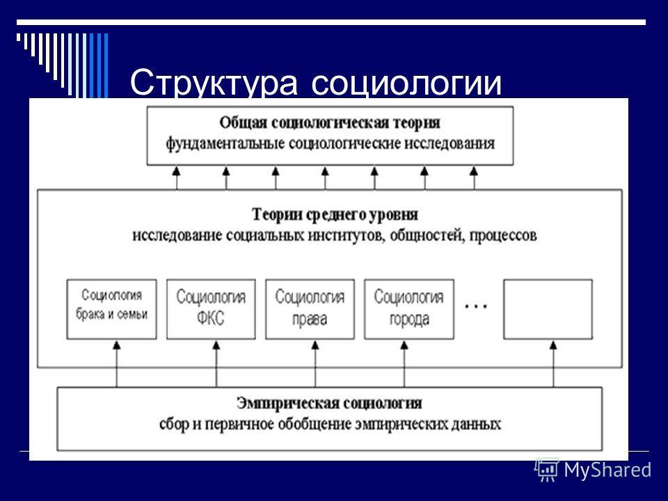 Структура социологии