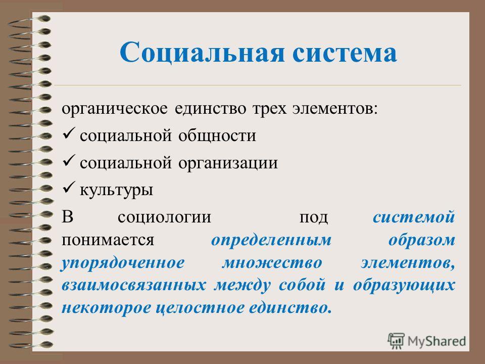 Социальная система органическое единство трех элементов: социальной общности социальной организации культуры В социологии под системой понимается определенным образом упорядоченное множество элементов, взаимосвязанных между собой и образующих некотор