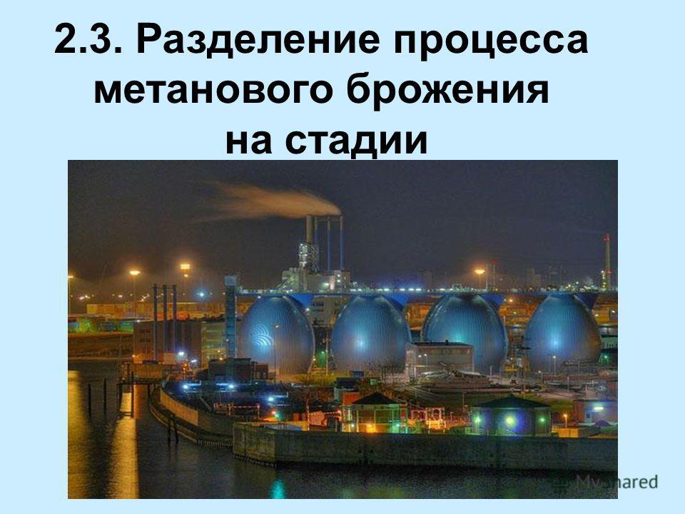 2.3. Разделение процесса метанового брожения на стадии