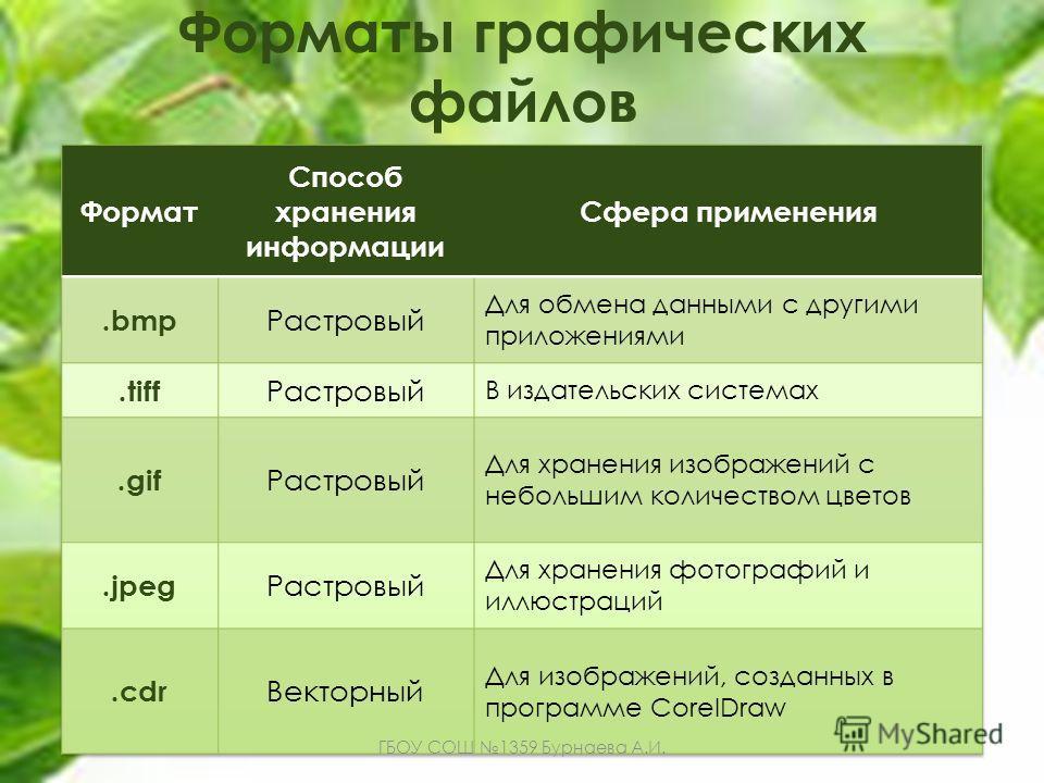 Форматы графических файлов ГБОУ СОШ 1359 Бурнаева А.И.
