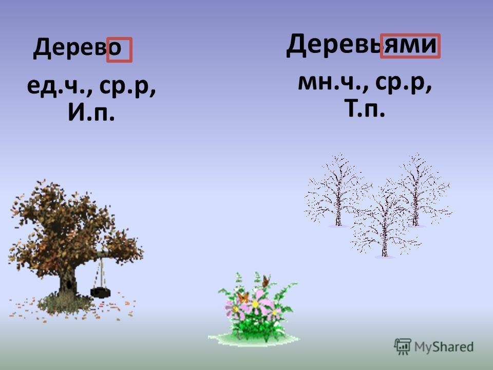 Дерево ед.ч., ср.р, И.п. Деревьями мн.ч., ср.р, Т.п.