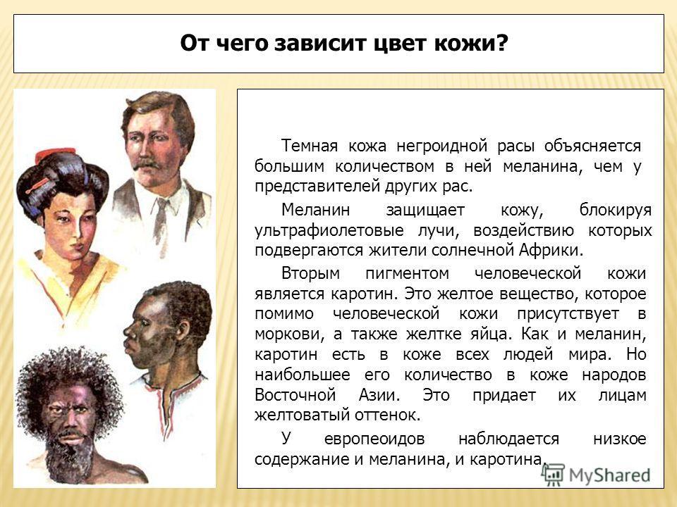 От чего зависит цвет кожи? Темная кожа негроидной расы объясняется большим количеством в ней меланина, чем у представителей других рас. Меланин защищает кожу, блокируя ультрафиолетовые лучи, воздействию которых подвергаются жители солнечной Африки. В