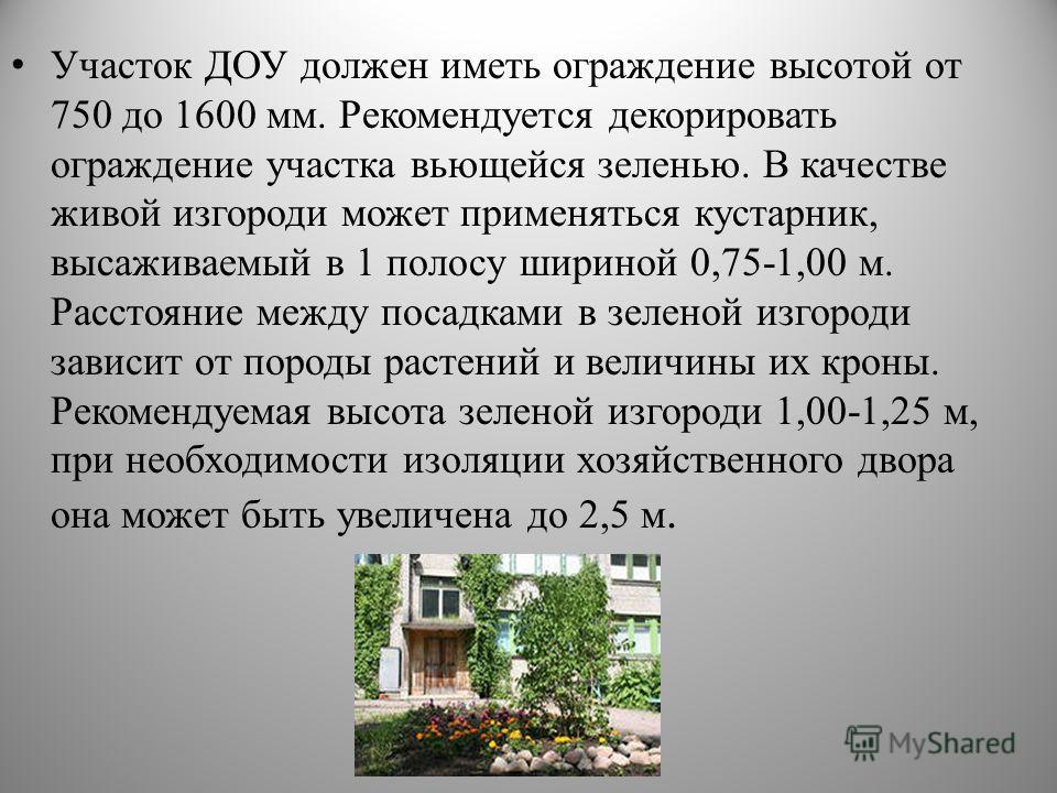 Участок ДОУ должен иметь ограждение высотой от 750 до 1600 мм. Рекомендуется декорировать ограждение участка вьющейся зеленью. В качестве живой изгороди может применяться кустарник, высаживаемый в 1 полосу шириной 0,75-1,00 м. Расстояние между посадк