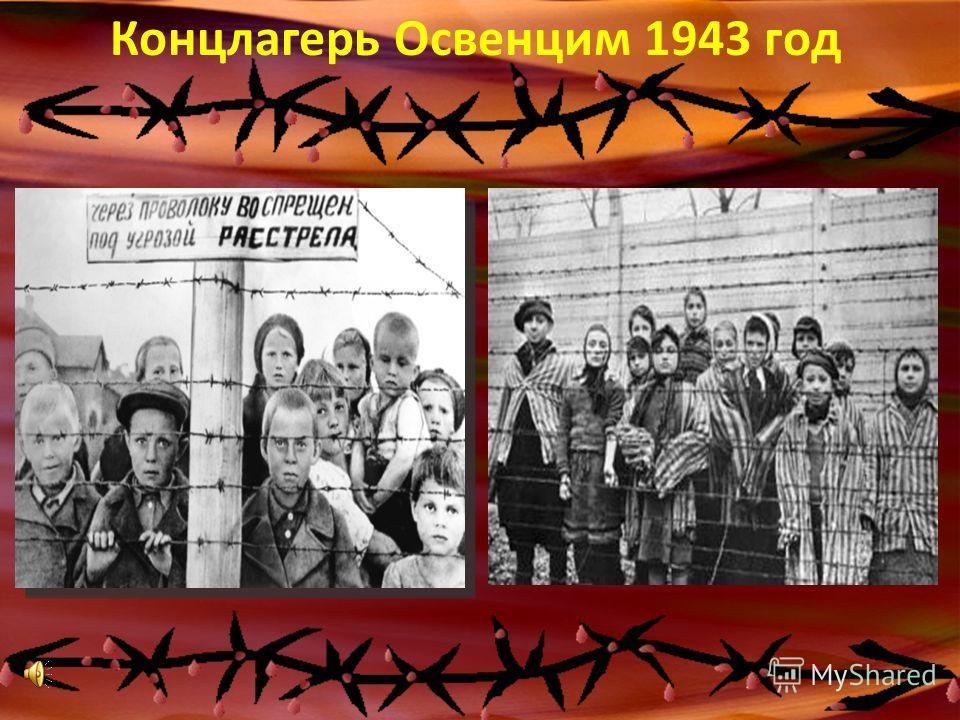 Концлагерь Освенцим 1943 год