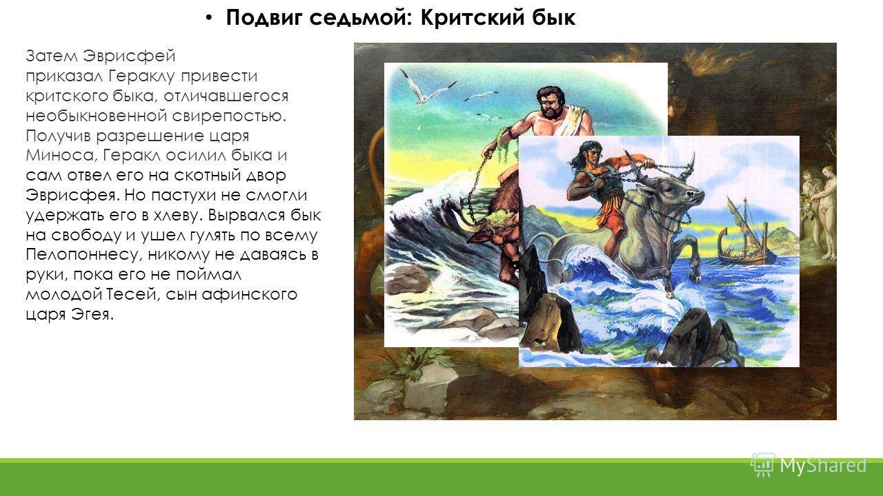 Подвиг седьмой: Критский бык Затем Эврисфей приказал Гераклу привести критского быка, отличавшегося необыкновенной свирепостью. Получив разрешение царя Миноса, Геракл осилил быка и сам отвел его на скотный двор Эврисфея. Но пастухи не смогли удержать