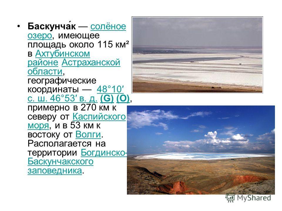 Баскунча́к солёное озеро, имеющее площадь около 115 км² в Ахтубинском районе Астраханской области, географические координаты 48°10 с. ш. 46°53 в. д. (G) (O), примерно в 270 км к северу от Каспийского моря, и в 53 км к востоку от Волги. Располагается