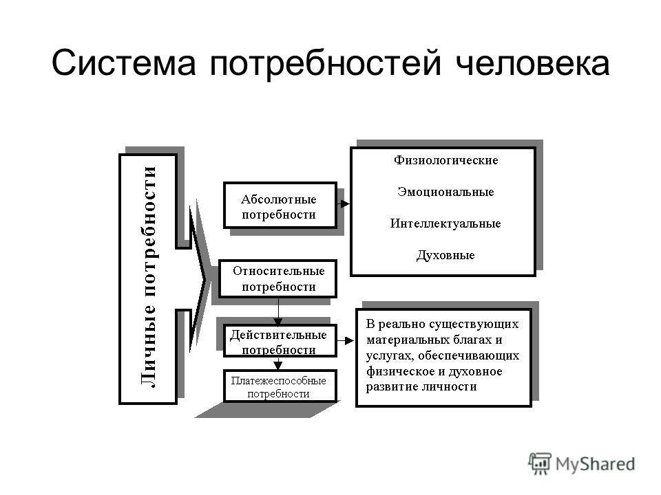 Система потребностей человека