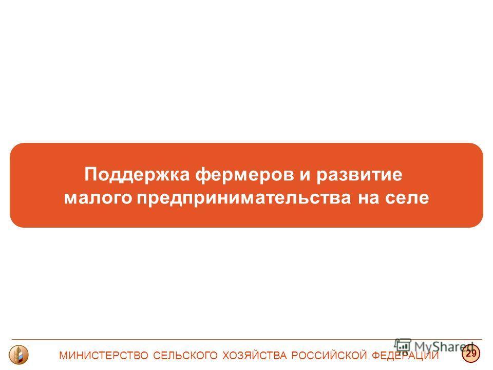 Поддержка фермеров и развитие малого предпринимательства на селе МИНИСТЕРСТВО СЕЛЬСКОГО ХОЗЯЙСТВА РОССИЙСКОЙ ФЕДЕРАЦИИ 29
