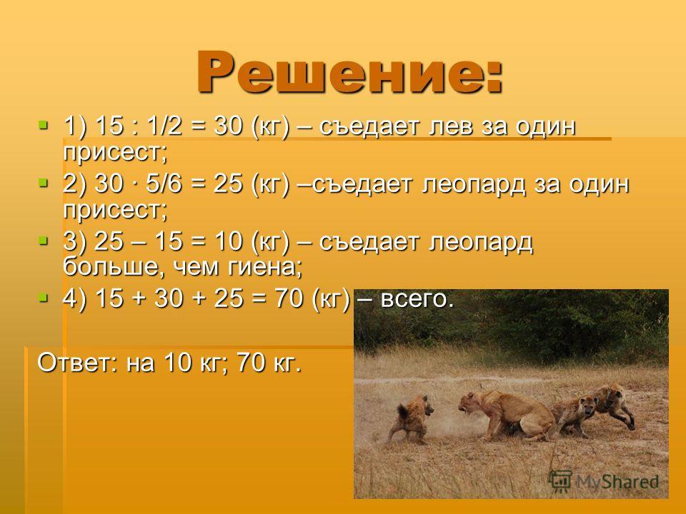 Решение: 1) 15 : 1/2 = 30 (кг) – съедает лев за один присест; 1) 15 : 1/2 = 30 (кг) – съедает лев за один присест; 2) 30 · 5/6 = 25 (кг) –съедает леопард за один присест; 2) 30 · 5/6 = 25 (кг) –съедает леопард за один присест; 3) 25 – 15 = 10 (кг) –