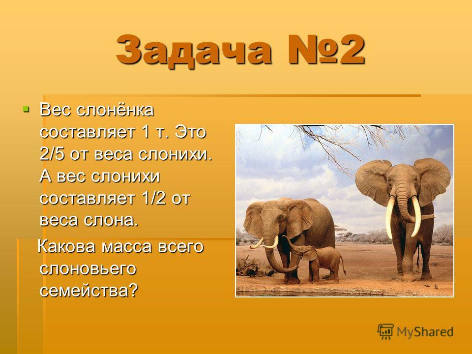 Задача 2 Вес слонёнка составляет 1 т. Это 2/5 от веса слонихи. А вес слонихи составляет 1/2 от веса слона. Вес слонёнка составляет 1 т. Это 2/5 от веса слонихи. А вес слонихи составляет 1/2 от веса слона. Какова масса всего слоновьего семейства? Како