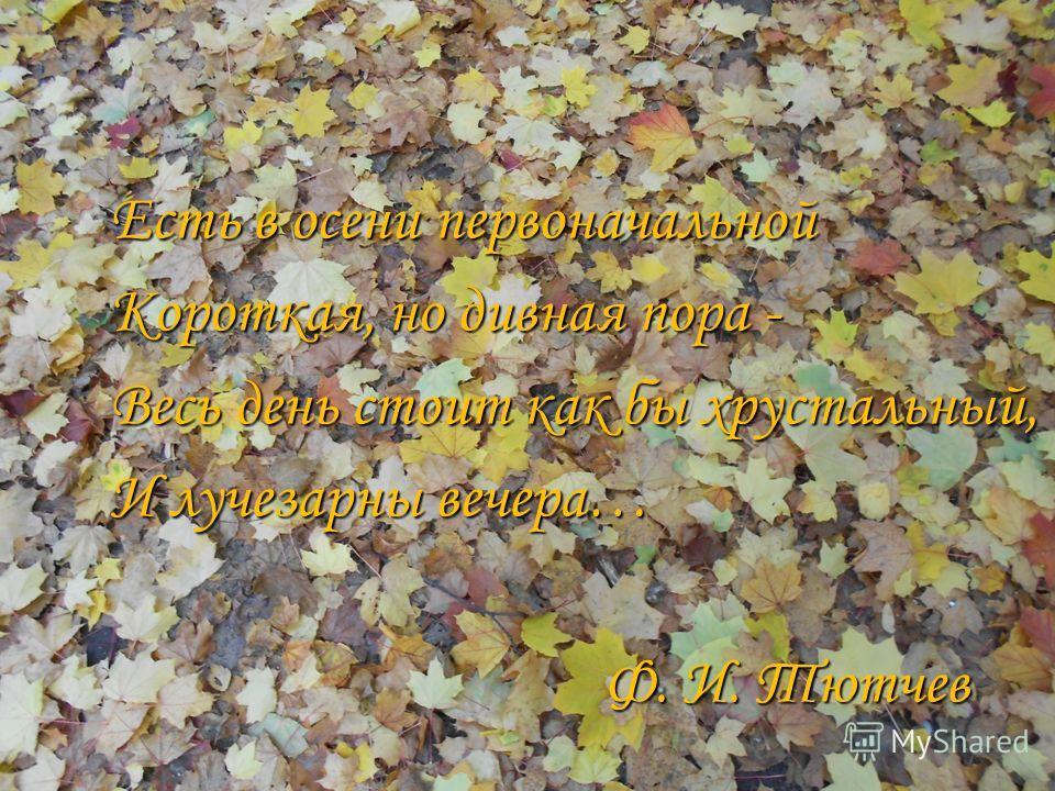 Есть в осени первоначальной Короткая, но дивная пора - Весь день стоит как бы хрустальный, И лучезарны вечера… Ф. И. Тютчев Ф. И. Тютчев