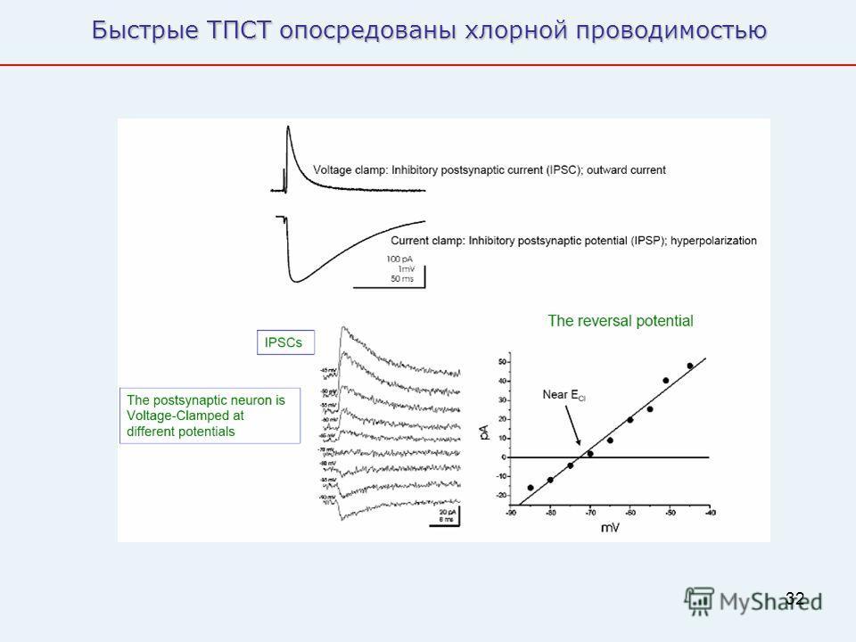32 Быстрые ТПСТ опосредованы хлорной проводимостью