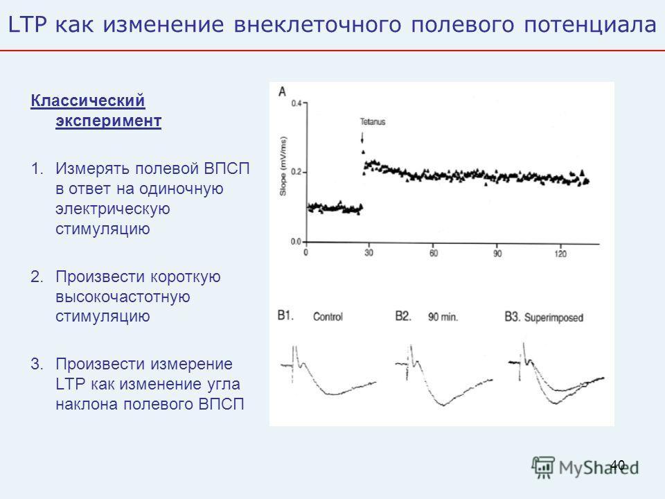 40 LTP как изменение внеклеточного полевого потенциала Классический эксперимент 1.Измерять полевой ВПСП в ответ на одиночную электрическую стимуляцию 2.Произвести короткую высокочастотную стимуляцию 3.Произвести измерение LTP как изменение угла накло
