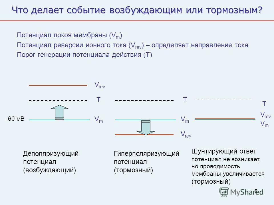 8 Что делает событие возбуждающим или тормозным? Потенциал покоя мембраны (V m ) Потенциал реверсии ионного тока (V rev ) – определяет направление тока Порог генерации потенциала действия (T) VmVm T V rev Деполяризующий потенциал (возбуждающий) VmVm