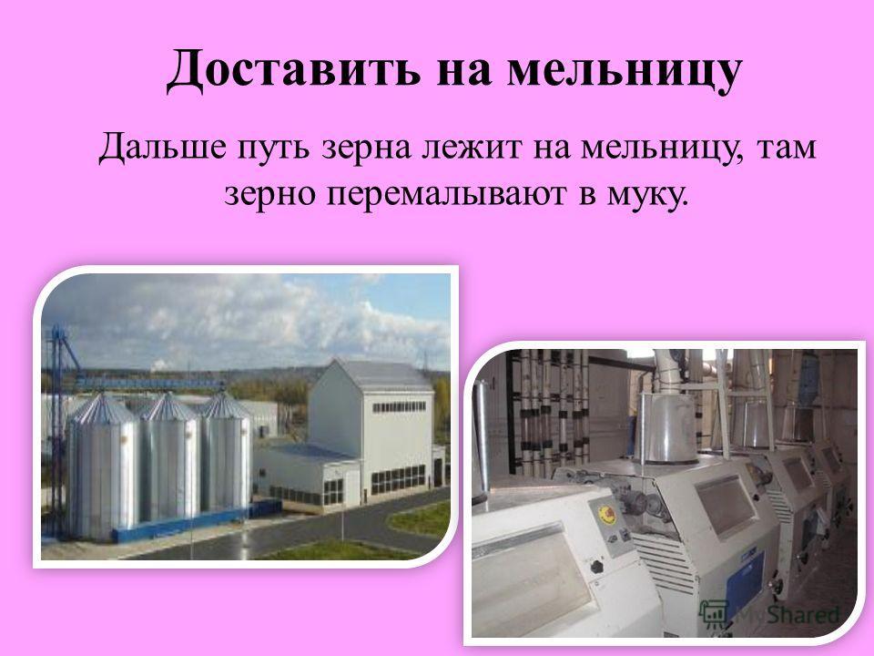 Доставить на мельницу Дальше путь зерна лежит на мельницу, там зерно перемалывают в муку.