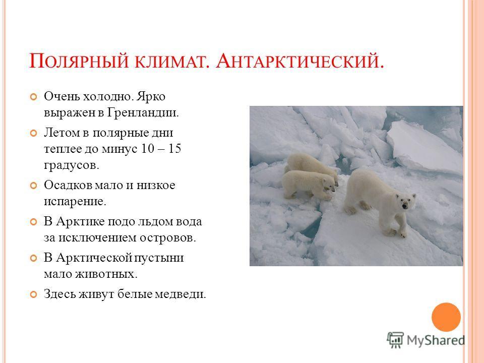 П ОЛЯРНЫЙ КЛИМАТ. А НТАРКТИЧЕСКИЙ. Очень холодно. Ярко выражен в Гренландии. Летом в полярные дни теплее до минус 10 – 15 градусов. Осадков мало и низкое испарение. В Арктике подо льдом вода за исключением островов. В Арктической пустыни мало животны