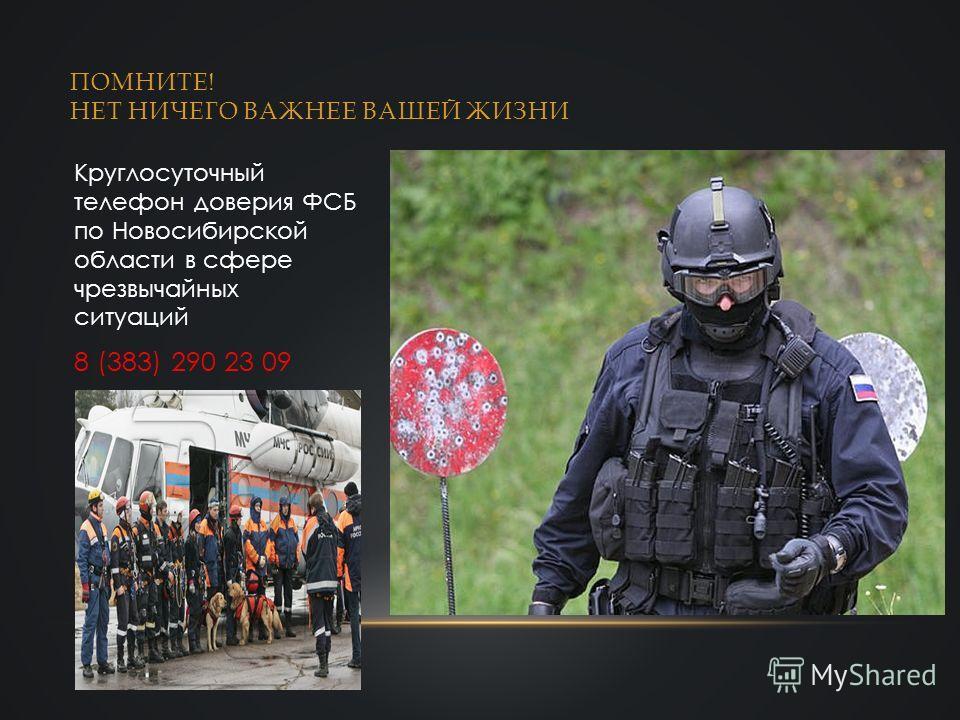 ПОМНИТЕ! НЕТ НИЧЕГО ВАЖНЕЕ ВАШЕЙ ЖИЗНИ Круглосуточный телефон доверия ФСБ по Новосибирской области в сфере чрезвычайных ситуаций 8 (383) 290 23 09