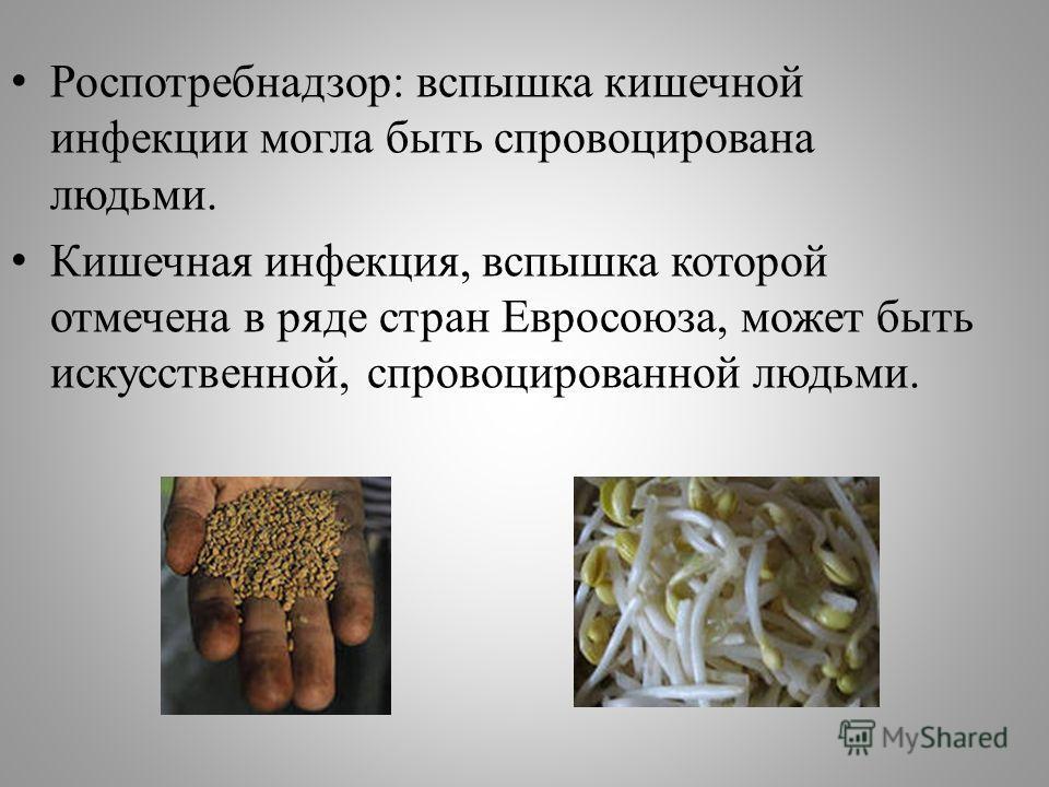 Роспотребнадзор: вспышка кишечной инфекции могла быть спровоцирована людьми. Кишечная инфекция, вспышка которой отмечена в ряде стран Евросоюза, может быть искусственной, спровоцированной людьми.