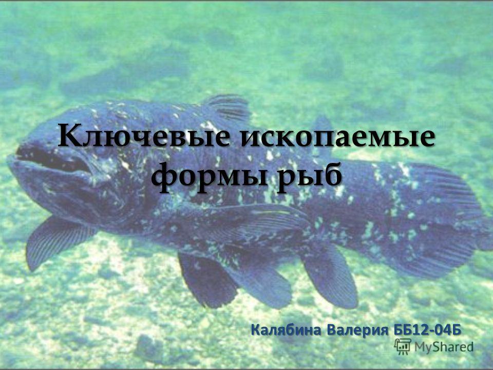 Ключевые ископаемые формы рыб Калябина Валерия ББ12-04Б