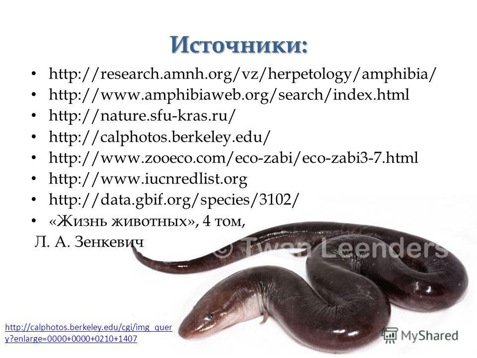 Источники: http://research.amnh.org/vz/herpetology/amphibia/ http://www.amphibiaweb.org/search/index.html http://nature.sfu-kras.ru/ http://calphotos.berkeley.edu/ http://www.zooeco.com/eco-zabi/eco-zabi3-7.html http://www.iucnredlist.org http://data