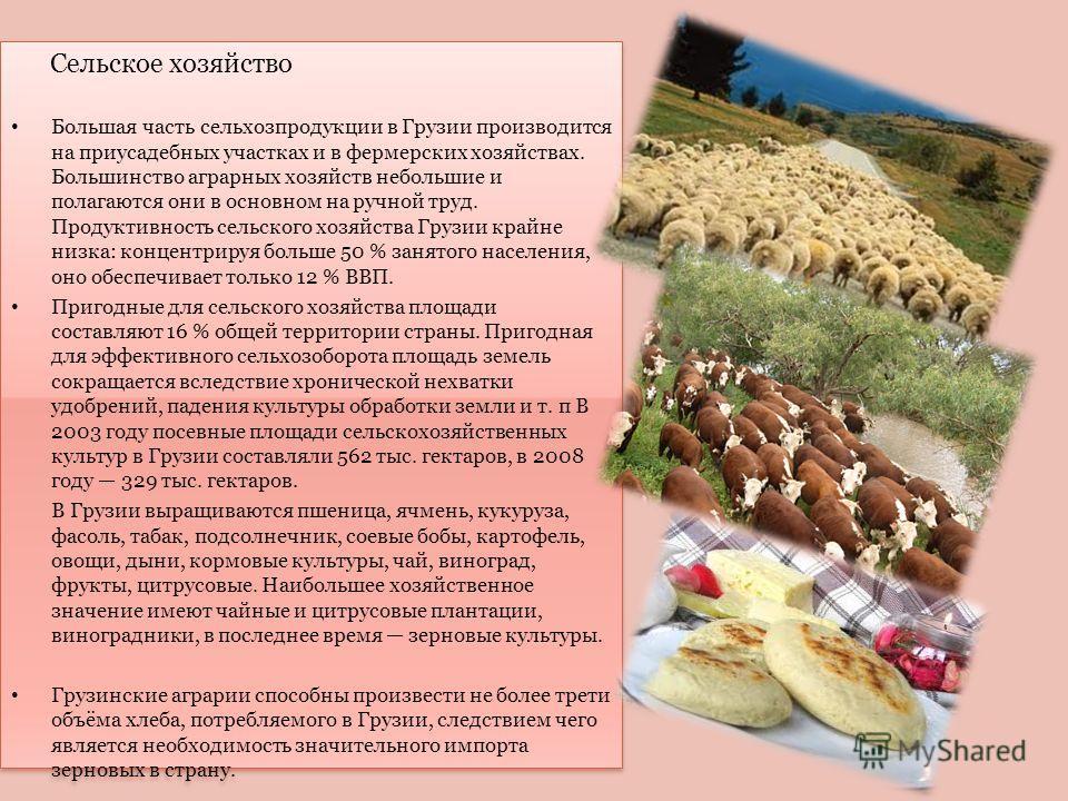 Сельское хозяйство Большая часть сельхозпродукции в Грузии производится на приусадебных участках и в фермерских хозяйствах. Большинство аграрных хозяйств небольшие и полагаются они в основном на ручной труд. Продуктивность сельского хозяйства Грузии