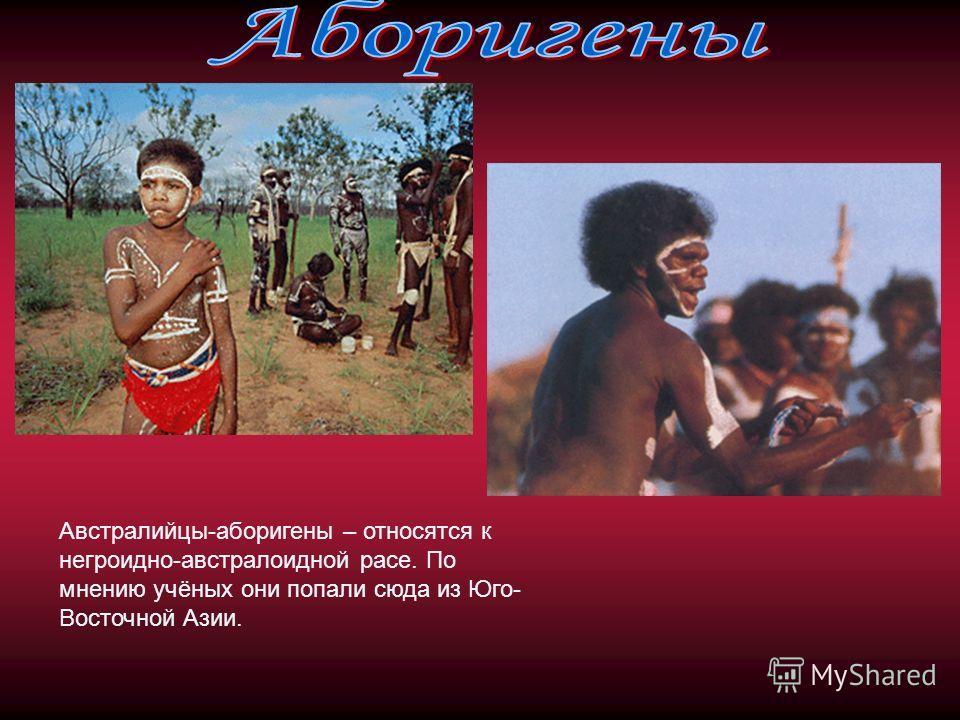 Австралийцы-аборигены – относятся к негроидно-австралоидной расе. По мнению учёных они попали сюда из Юго- Восточной Азии.