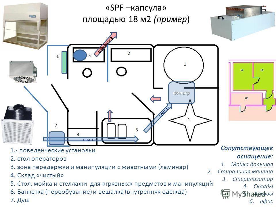 «SPF –капсула» площадью 18 м2 (пример) 1.- поведенческие установки 2. стол операторов 3. зона передержки и манипуляции с животными (ламинар) 4. Склад «чистый» 5. Стол, мойка и стеллажи для «грязных» предметов и манипуляций 6. Банкетка (переобувание)