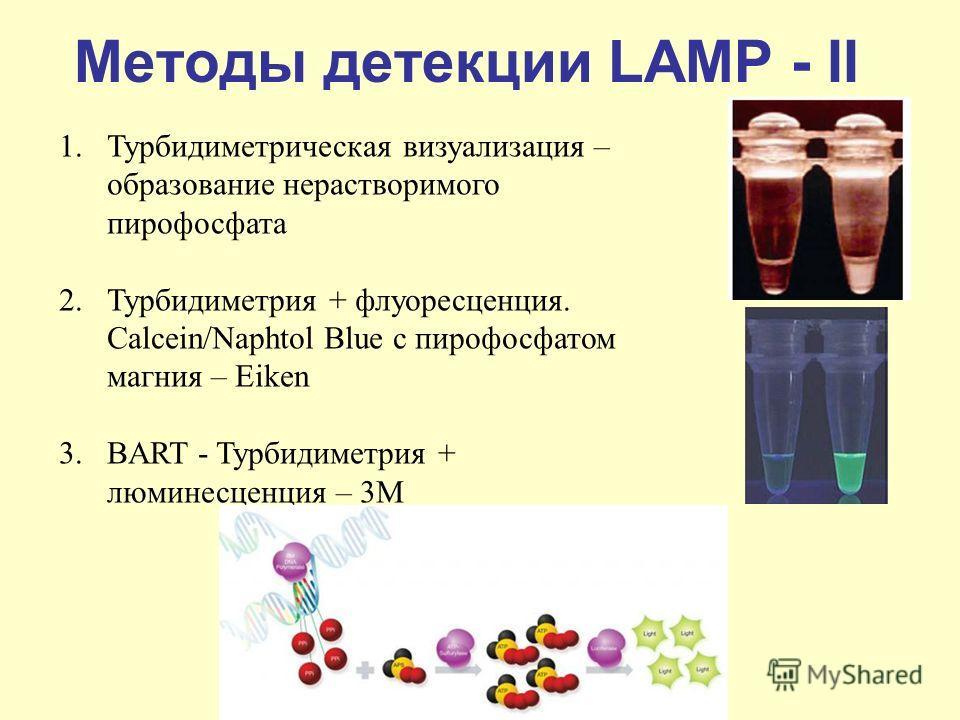 Методы детекции LAMP - II 1.Турбидиметрическая визуализация – образование нерастворимого пирофосфата 2.Турбидиметрия + флуоресценция. Calcein/Naphtol Blue с пирофосфатом магния – Eiken 3.BART - Турбидиметрия + люминесценция – 3М