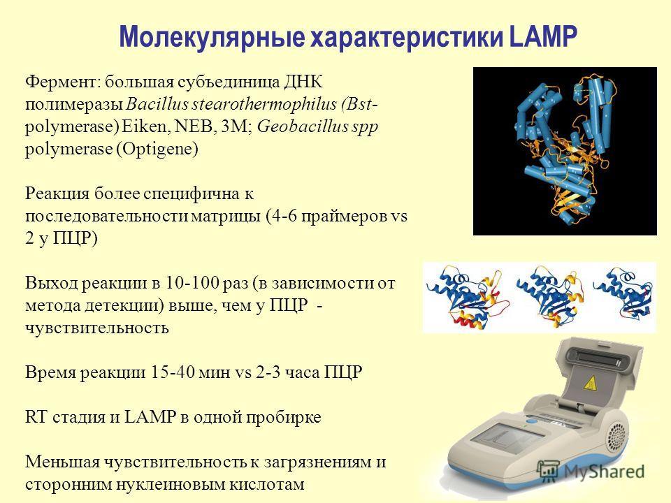 Молекулярные характеристики LAMP Фермент: большая субъединица ДНК полимеразы Bacillus stearothermophilus (Bst- polymerase) Eiken, NEB, 3M; Geobacillus spp polymerase (Optigene) Реакция более специфична к последовательности матрицы (4-6 праймеров vs 2