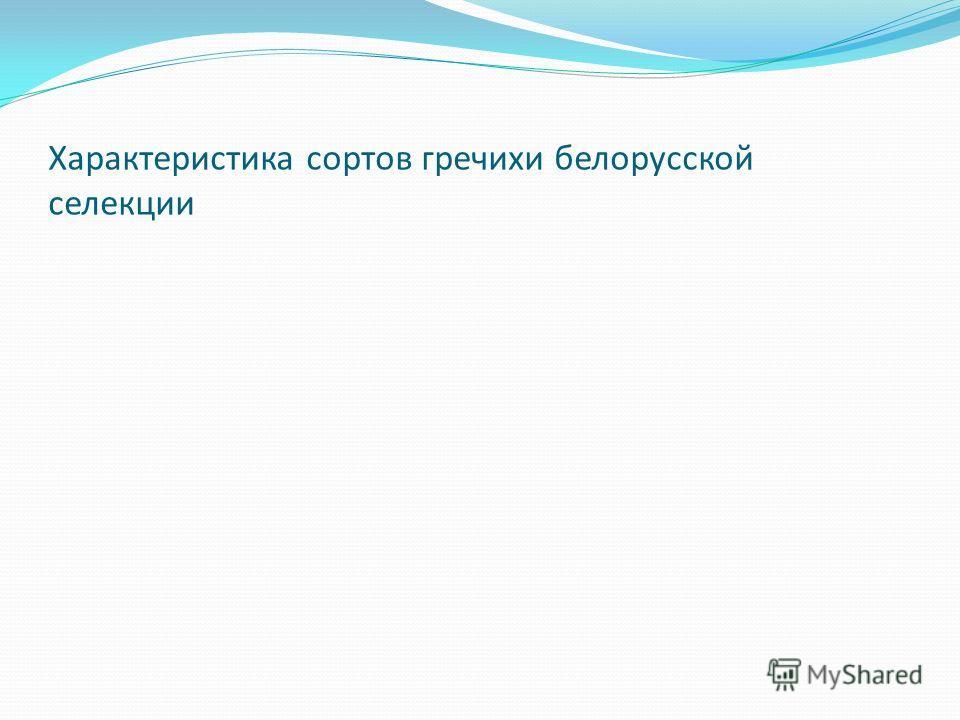 Характеристика сортов гречихи белорусской селекции