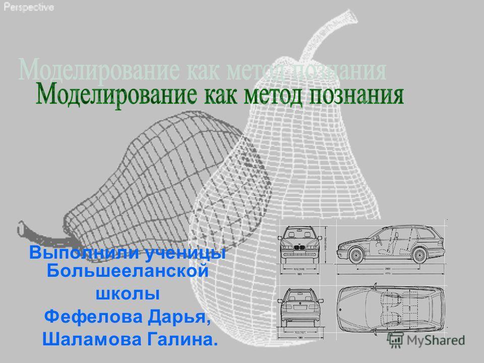 Выполнили ученицы Большееланской школы Фефелова Дарья, Шаламова Галина.