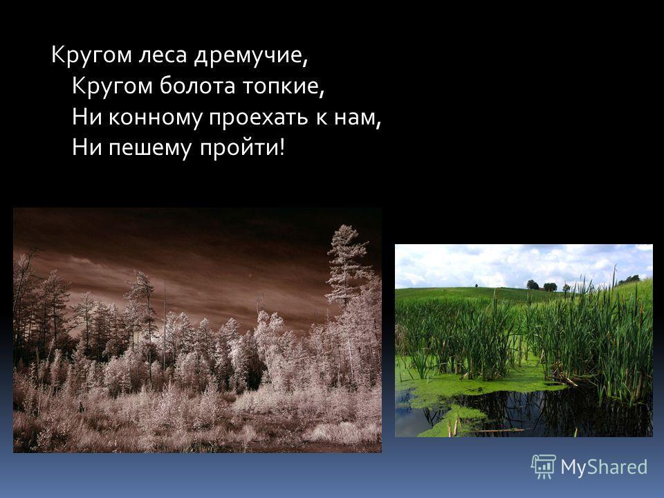 Кругом леса дремучие, Кругом болота топкие, Ни конному проехать к нам, Ни пешему пройти!