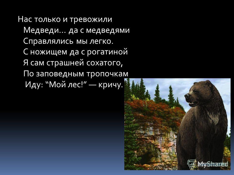 Нас только и тревожили Медведи... да с медведями Справлялись мы легко. С ножищем да с рогатиной Я сам страшней сохатого, По заповедным тропочкам Иду: Мой лес! кричу.