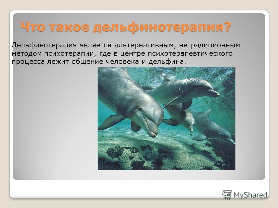 Что такое дельфинотерапия? Что такое дельфинотерапия? Дельфинотерапия является альтернативным, нетрадиционным методом психотерапии, где в центре психотерапевтического процесса лежит общение человека и дельфина.