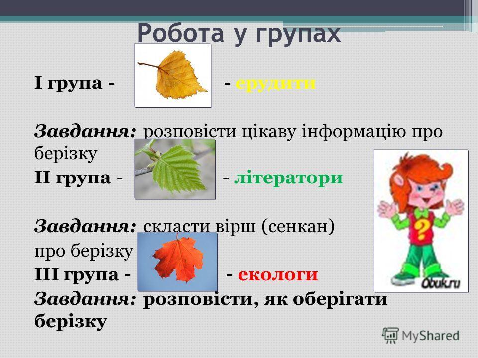 Робота у групах I група - - ерудити Завдання: розповісти цікаву інформацію про берізку II група - - літератори Завдання: скласти вірш (сенкан) про берізку III група - - екологи Завдання: розповісти, як оберігати берізку
