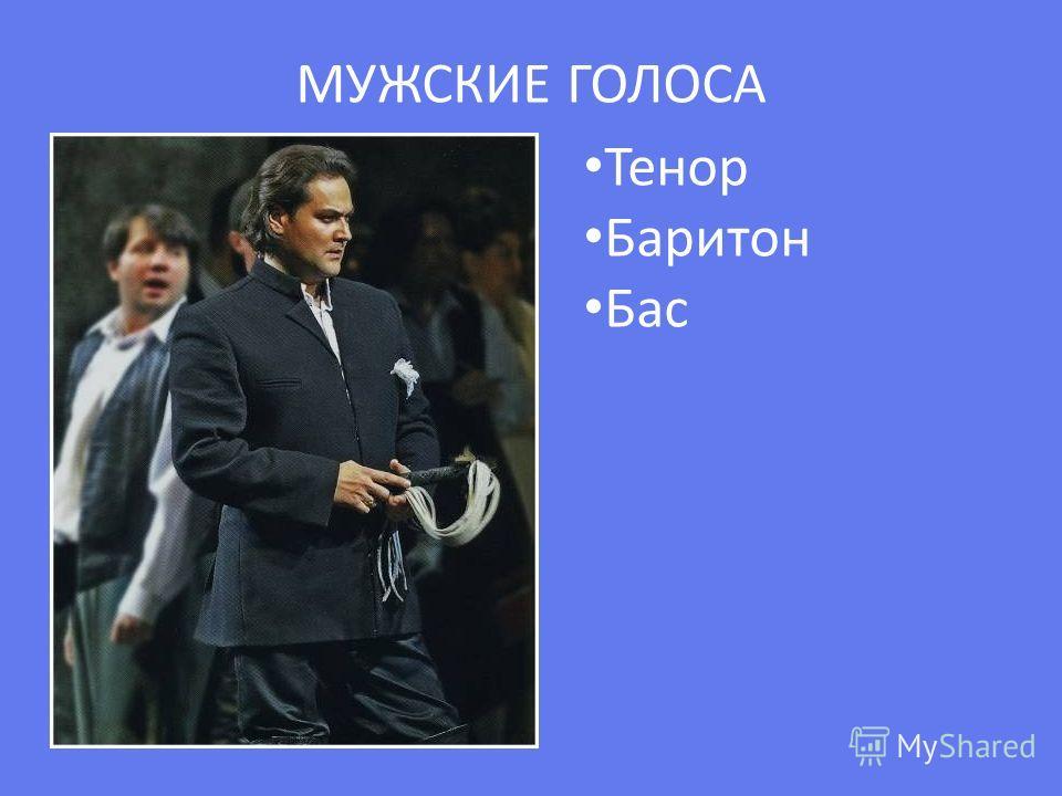 МУЖСКИЕ ГОЛОСА Тенор Баритон Бас
