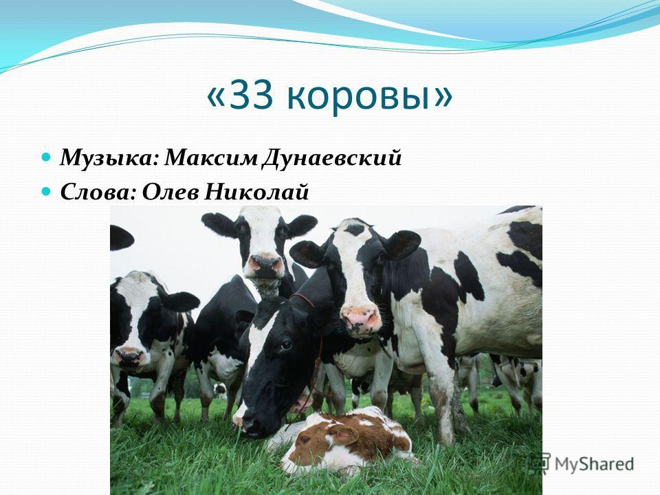 33 коровы  текст песни слова