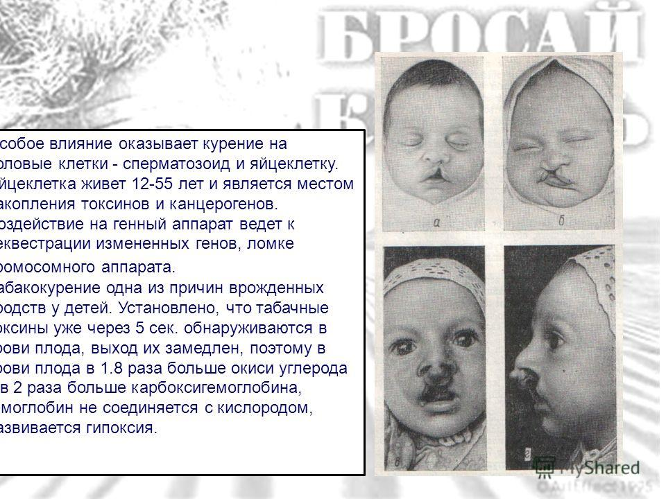 russkoe-domashnee-chastnoe-lyubitelskoy-kameroy-hhh